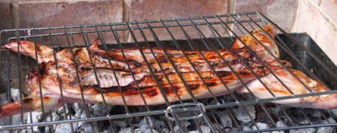 Рецепты приготовления кролика на мангале, в аэрогриле и костре