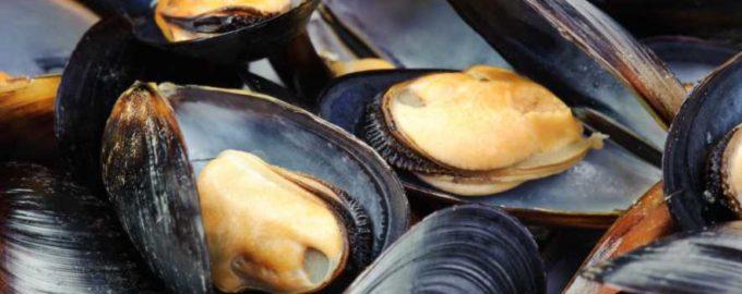 Интересные рецепты приготовления мидий на мангале